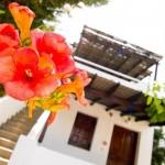 Hibiscus at Aegean apartments
