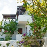 Explore the garden of our Skyros apartments