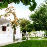 Skyros studios garden